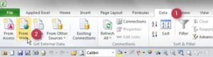 Web Query Icon