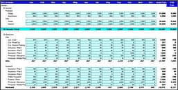 template to fill up the income and expenses